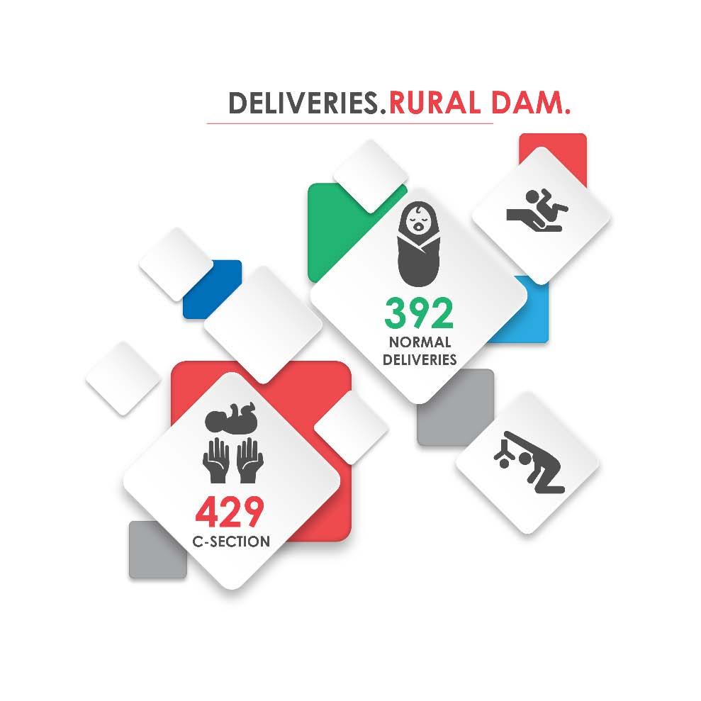 Fig._92.3_Number_of_Hospital_Deliveries__Rural_Damascus.jpg