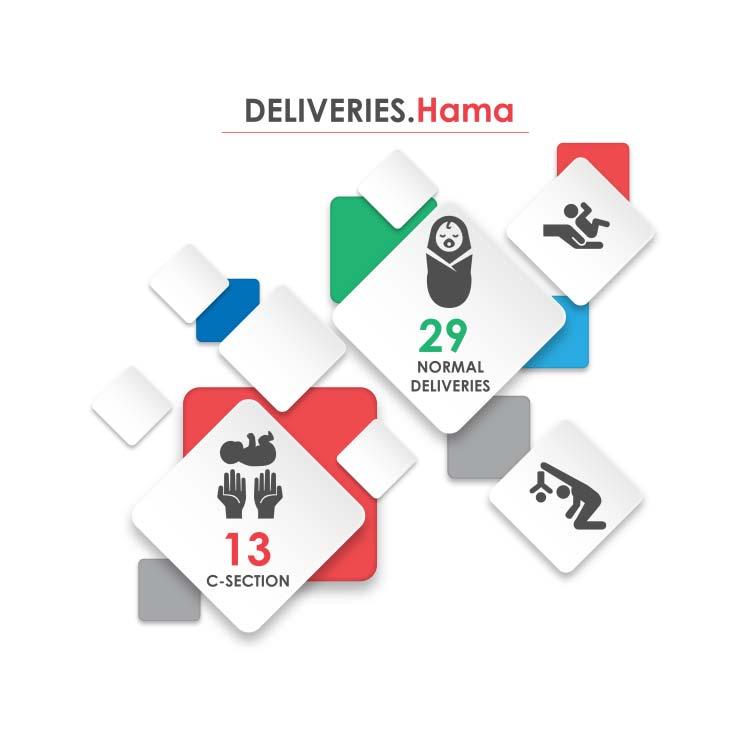 Fig._136.5_Number_of_Hospital_Deliveries__Hama.jpg