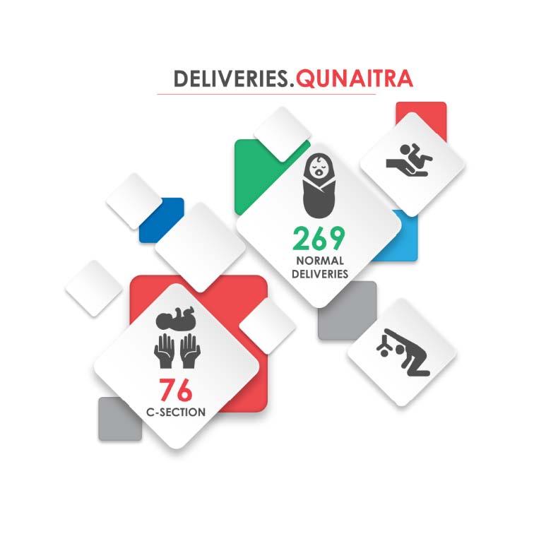 Fig._224.14_Number_of_Hospital_Deliveries__Qunaitra.jpg