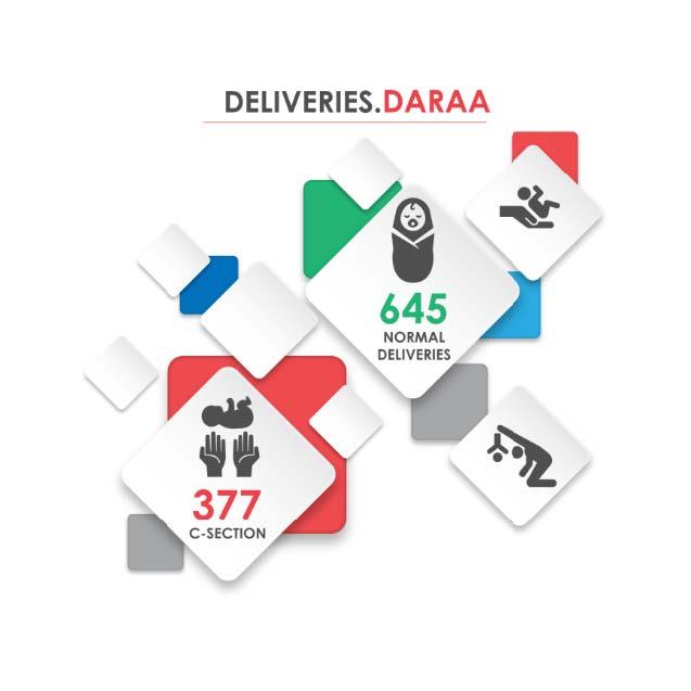 Fig._204.12_Number_of_Hospital_Deliveries__Daraa.jpg