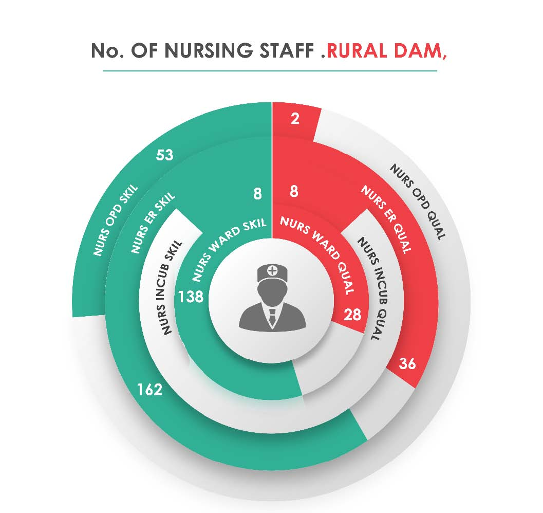 Fig._98.3_Human_Resources_Nursing_Staff__Rural_Damascus.jpg