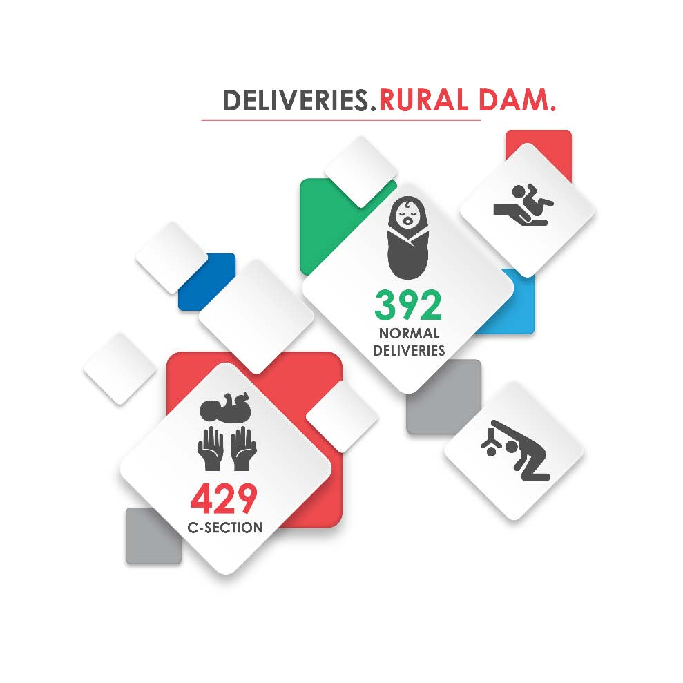 Fig._92.3_Number_of_Hospital_Deliveries__Rural_Damascus.jpg