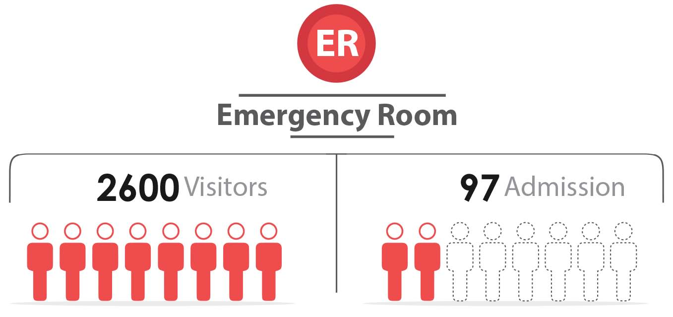 Fig._133.5_Number_of_Emergency_Visitors_and_admission__Hama.jpg