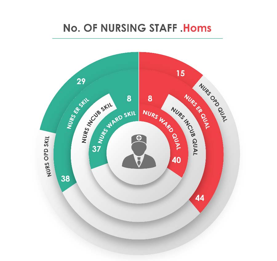Fig._121.4_Human_Resources_Nursing_Staff__Homs.jpg