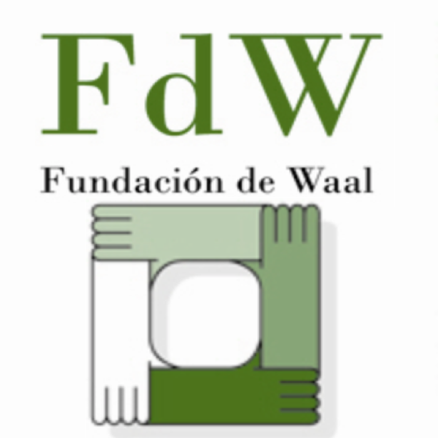 1-DeWaal_Foundation.png