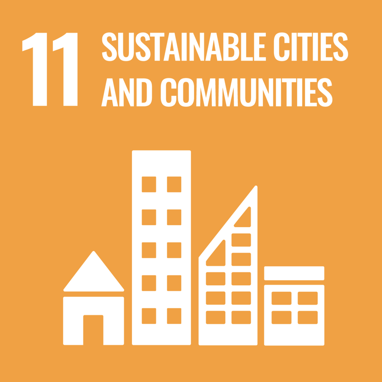 Women and SDG 11: Make cities and human settlements inclusive, safe, resilient and sustainable