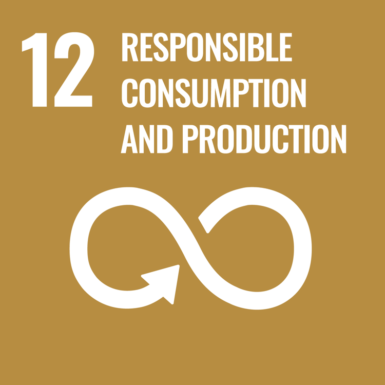 Women and SDG 12: Ensure sustainable consumption and production patterns