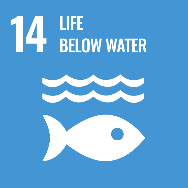 Women and SDG 14: Conserve and sustainably use the oceans, seas and marine resources for sustainable development