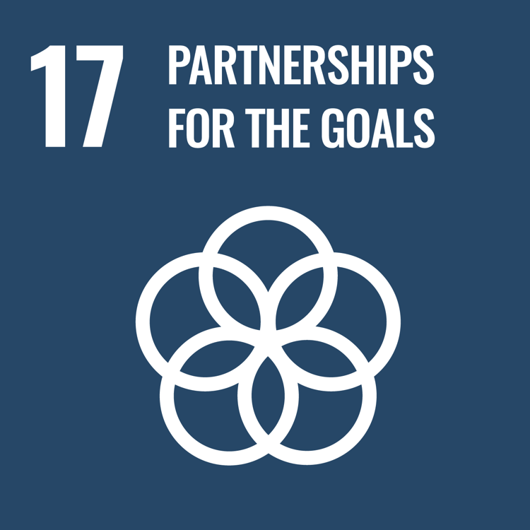 Women and SDG 17: Strengthen the means of implementation and revitalize the Global Partnership for Sustainable Development