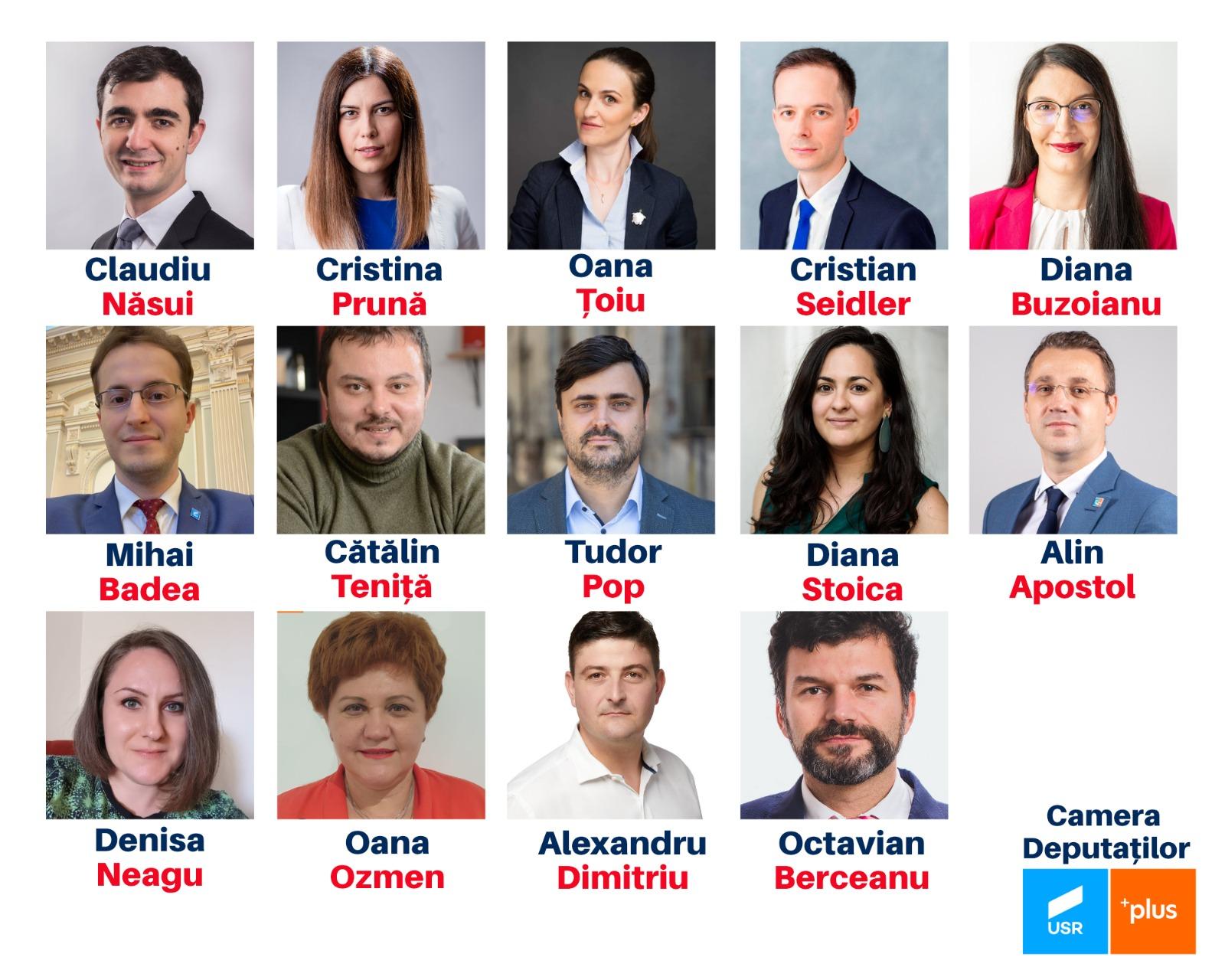 deputații își raportează veniturile online 2021 online