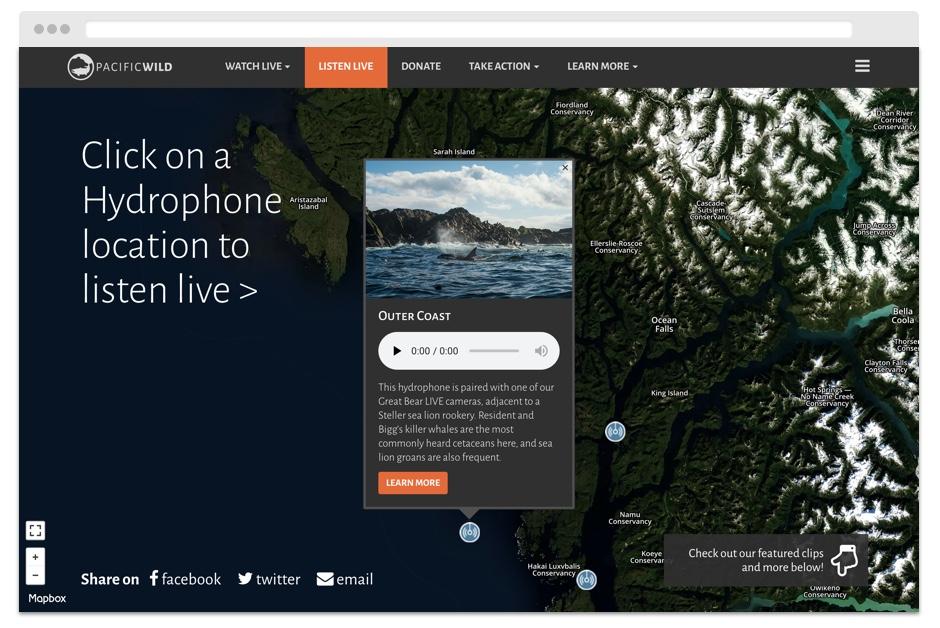 hydrophone-network.jpg