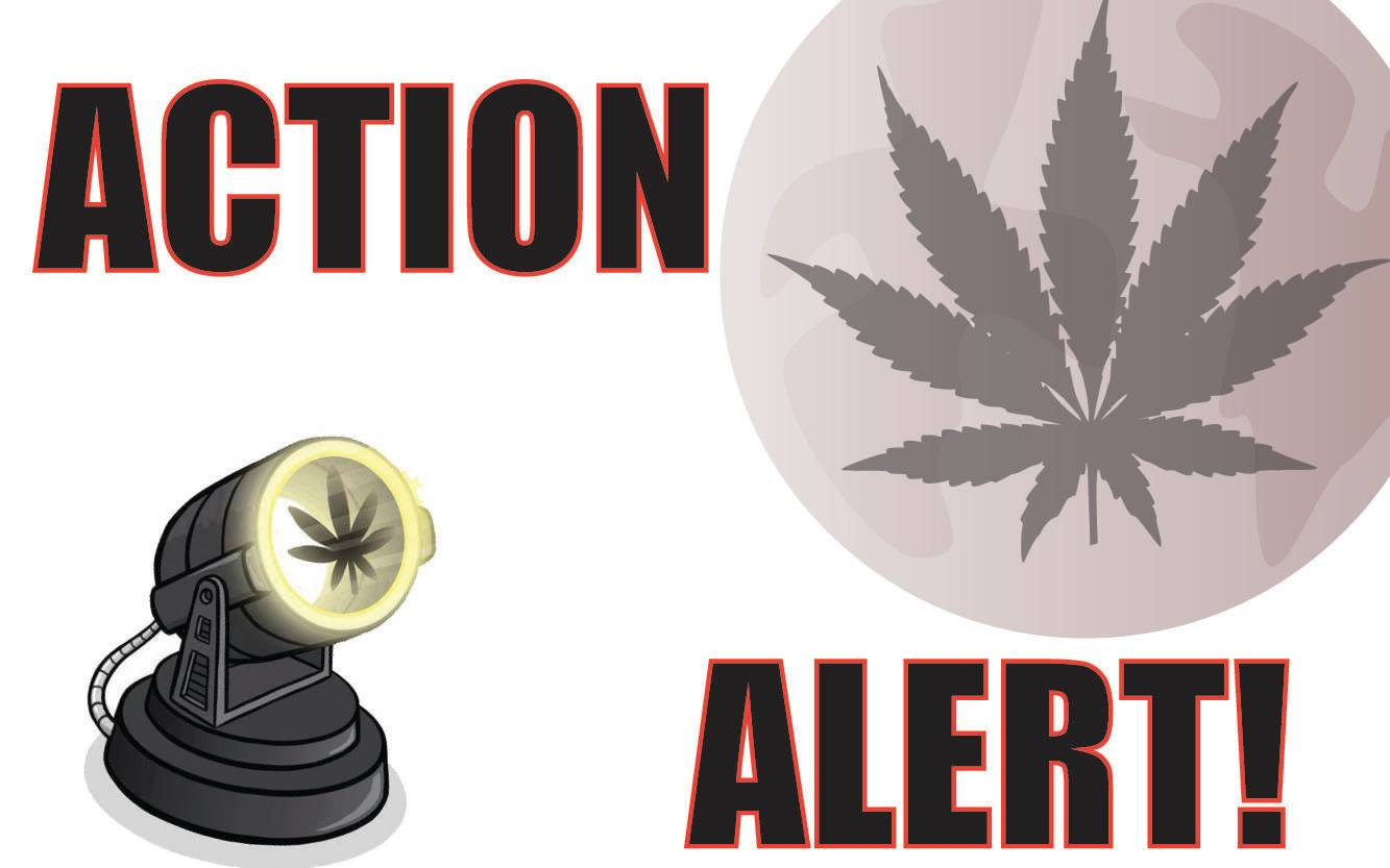 action_alert.jpg