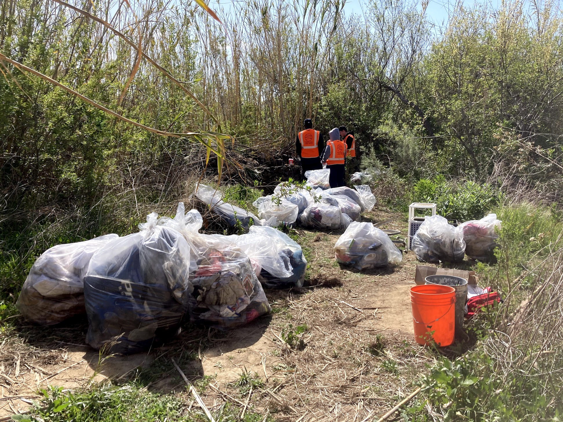 river_cleanup_event.jpeg