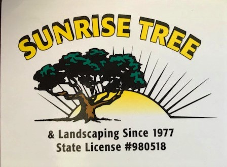 Sunrise_tree_service.jpg