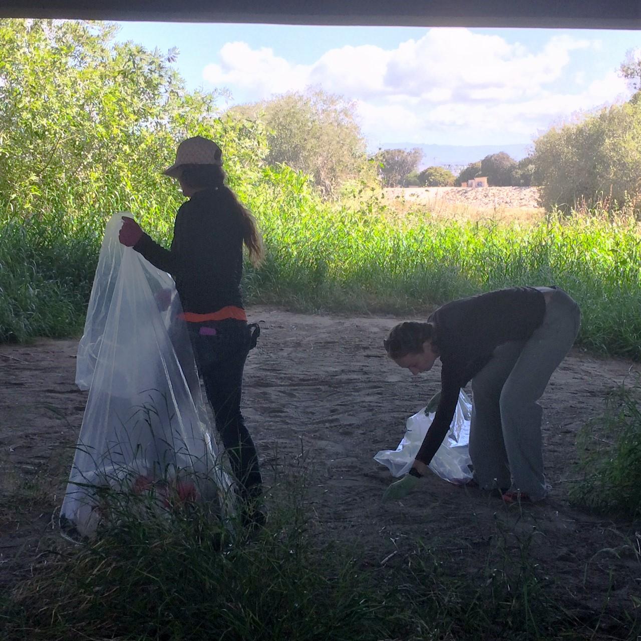Trash removal volunteers