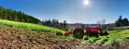 Regional Farmland Trust