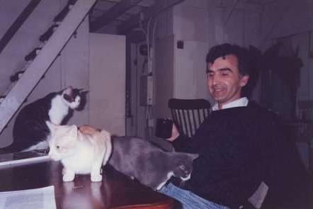 studiocats.png