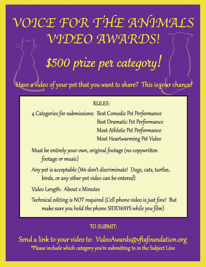 Voice For The Animals Video Awards - Voice For The Animals