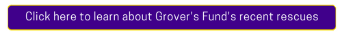 Grovers_Fund_Button2.png
