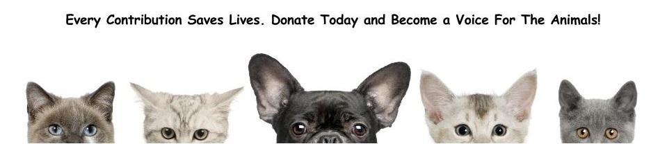 Donate_Banner.jpg
