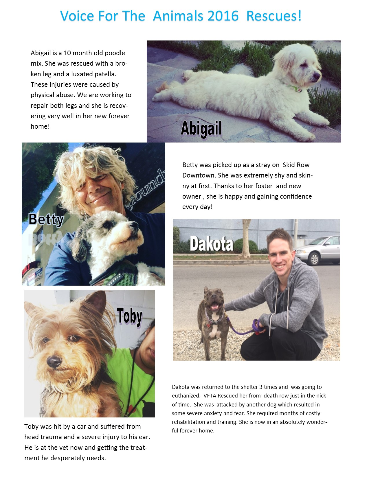 mailer_2016_adoptions.jpg
