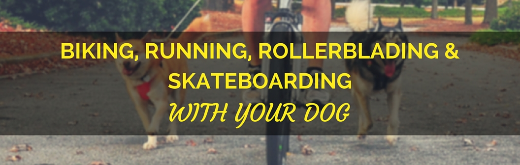 Copy_of_Biking__Running__Rollerblading__and_Skateboarding_(2).jpg