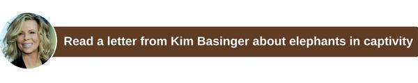 Kim1234567.png