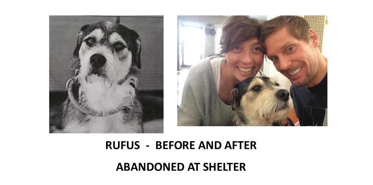 Rufus_before_after.png