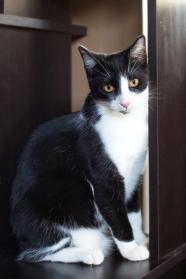 Penelope2.jpg