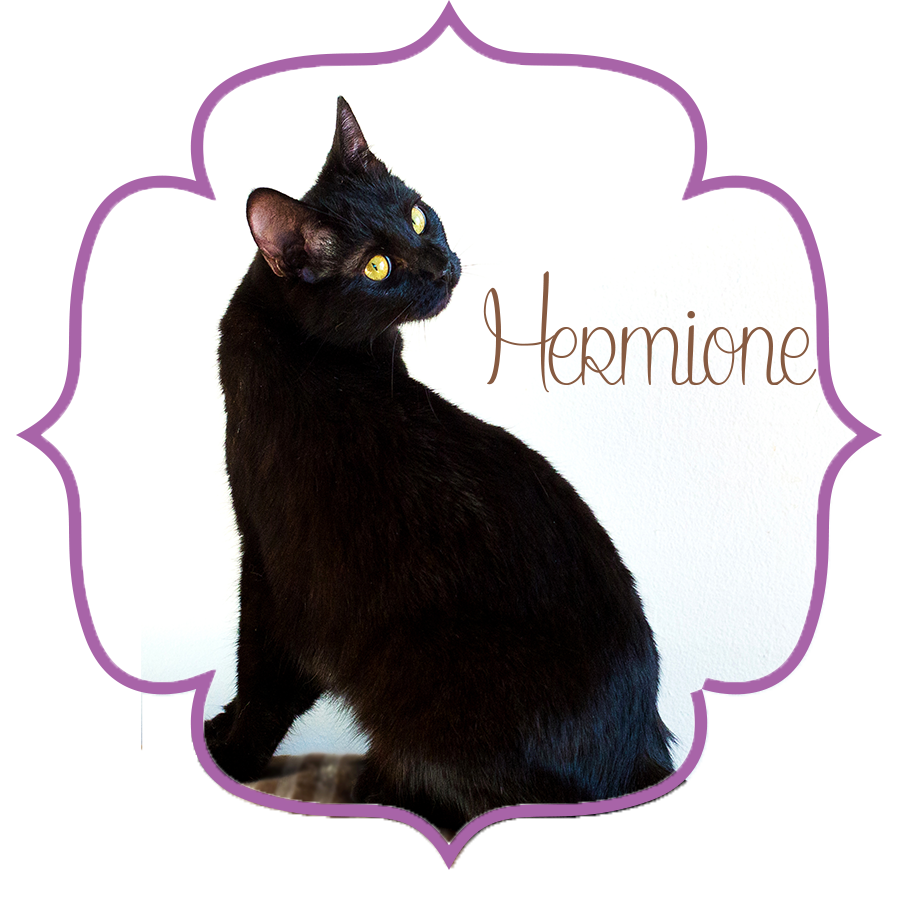 Hermione_Front.png