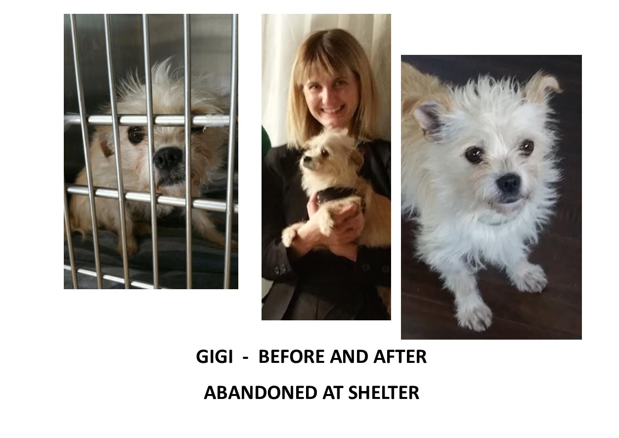 gigi_before_after.png