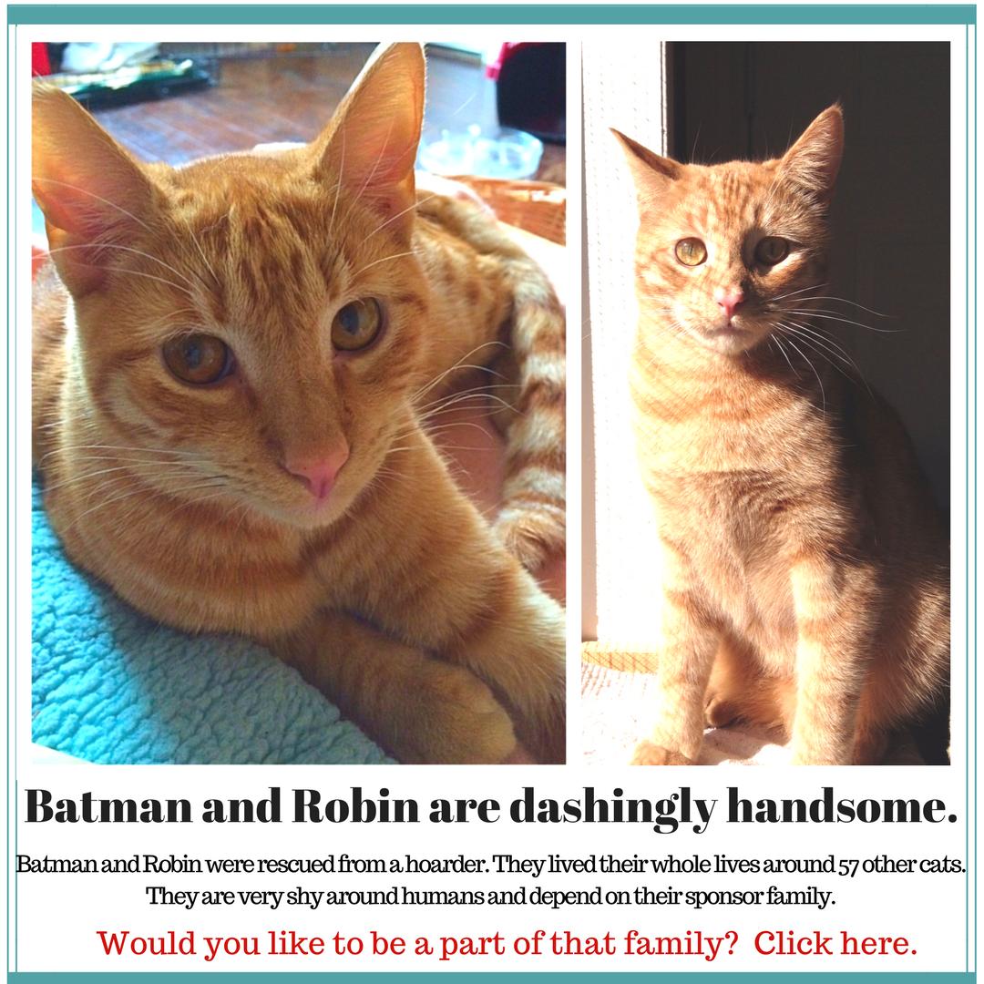 Batman_and_Robin_sponsor_(1).png