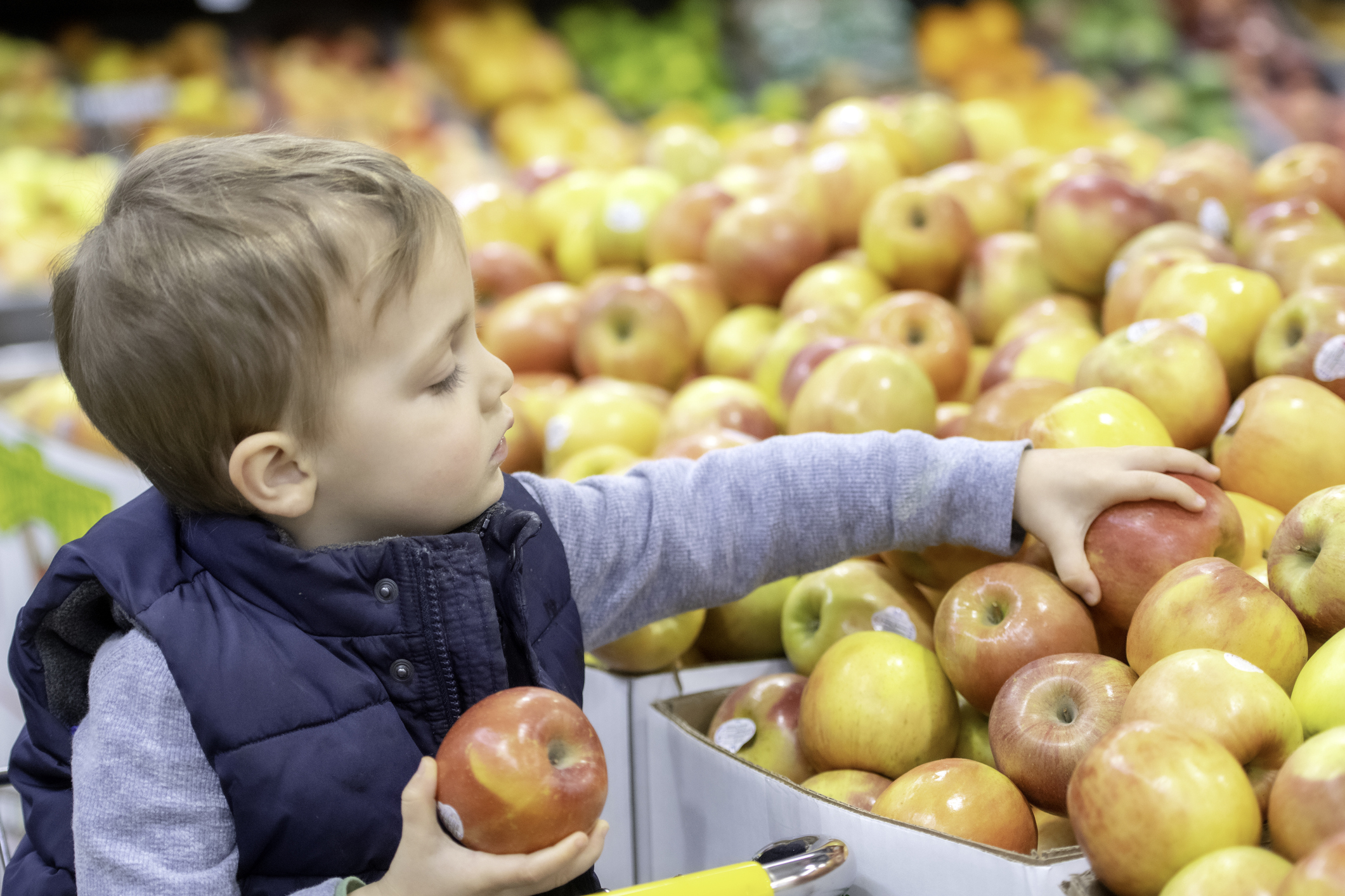 New Data Show the Impact of Proposed SNAP Changes
