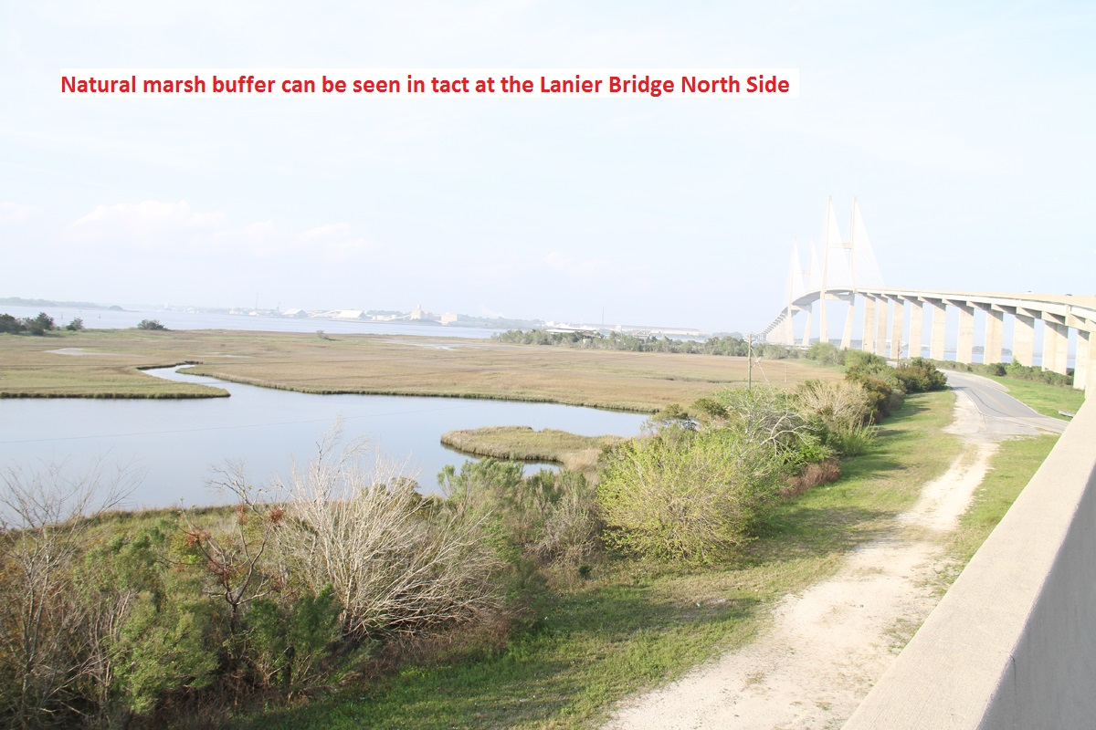 _1-3291----3-20-14_A_good_natural_marsh_buffer_(Lanier_Bridge).jpg