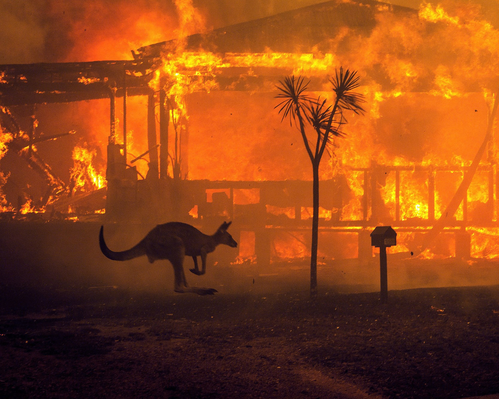 KELVIN'S BLOG: Fighting fire in a changing climate
