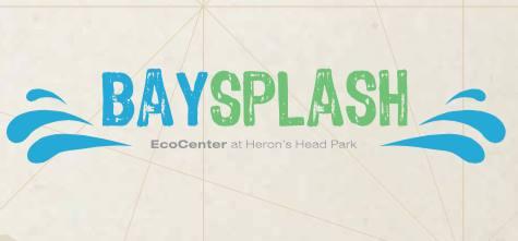 baysplash!.jpg