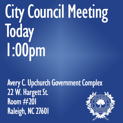 CouncilMeeting1pm.png