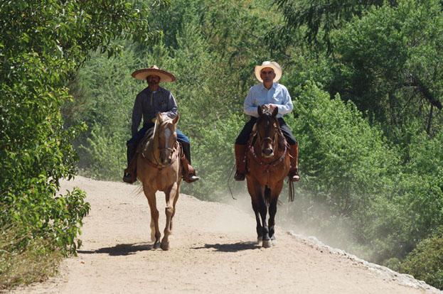 Equestrian1_sm.jpg