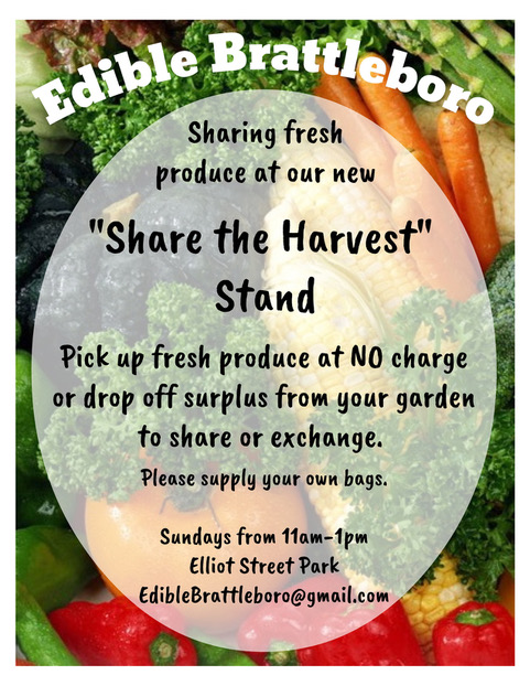 Share the Harvest information with carrots and other greens in the background