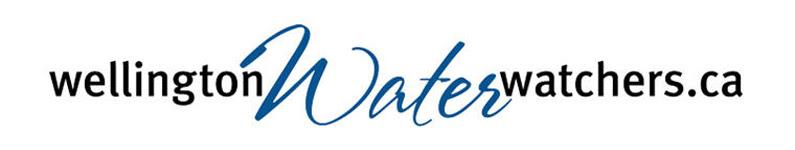 WWW_logo.jpg