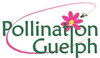 Pollination Guelph logo