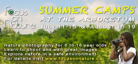 Focus on Nature Summer Camp