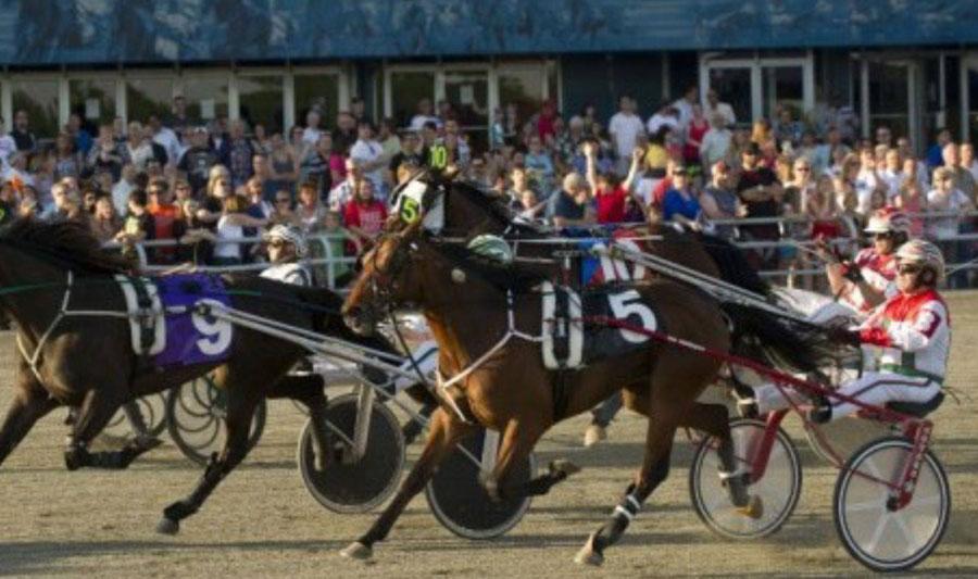 mohawk-racetrack-auction.jpg