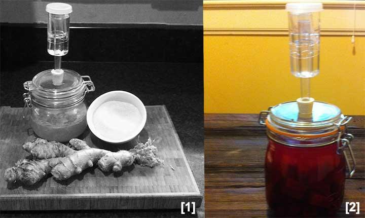 ferment01new.jpg