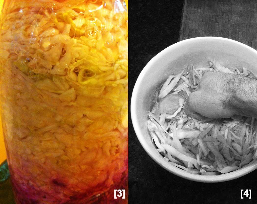 ferment02.jpg