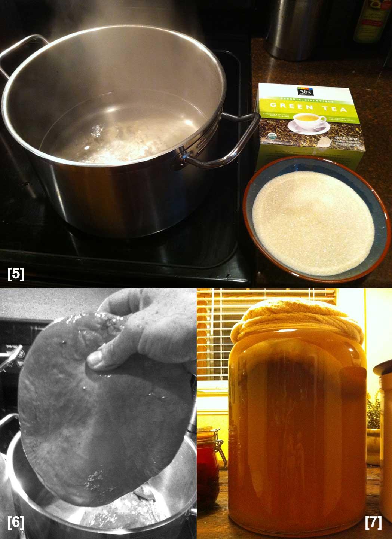 ferment03.jpg