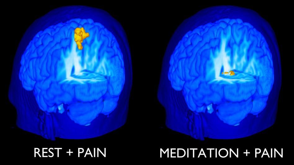 pain_and_meditation.jpg