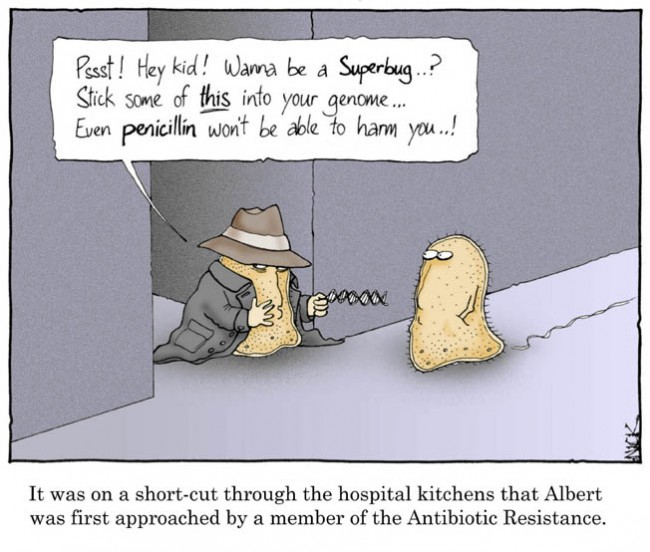 antibiotic-resistance-comic-650x552.jpg