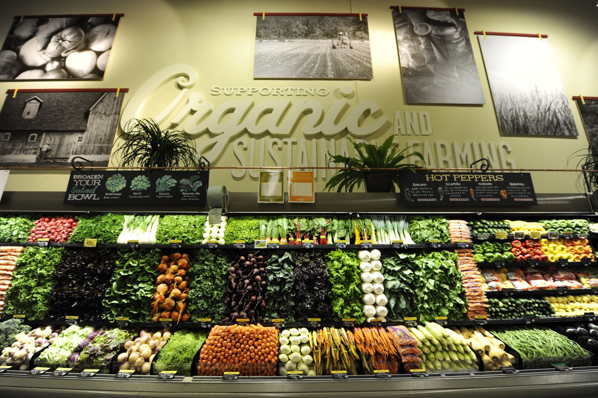 organic-produce-section-press.jpg