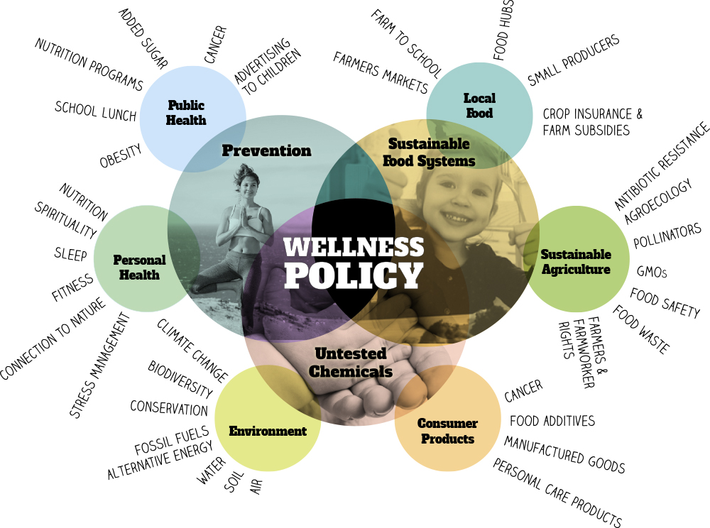 wellness_diagram.jpg